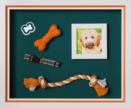 Custom framed piece with dog picture and dog accessories mounted on teal backing.