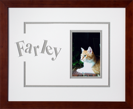 Art, Decor, Framing, Framed Memories, Pets