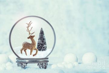 1-winter-snow-globe-with-reindeer-figure-amanda-elwell