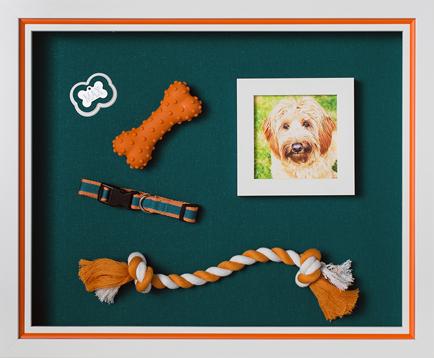 Art, Decor, Framing, Custom, Framed Memories, Dog