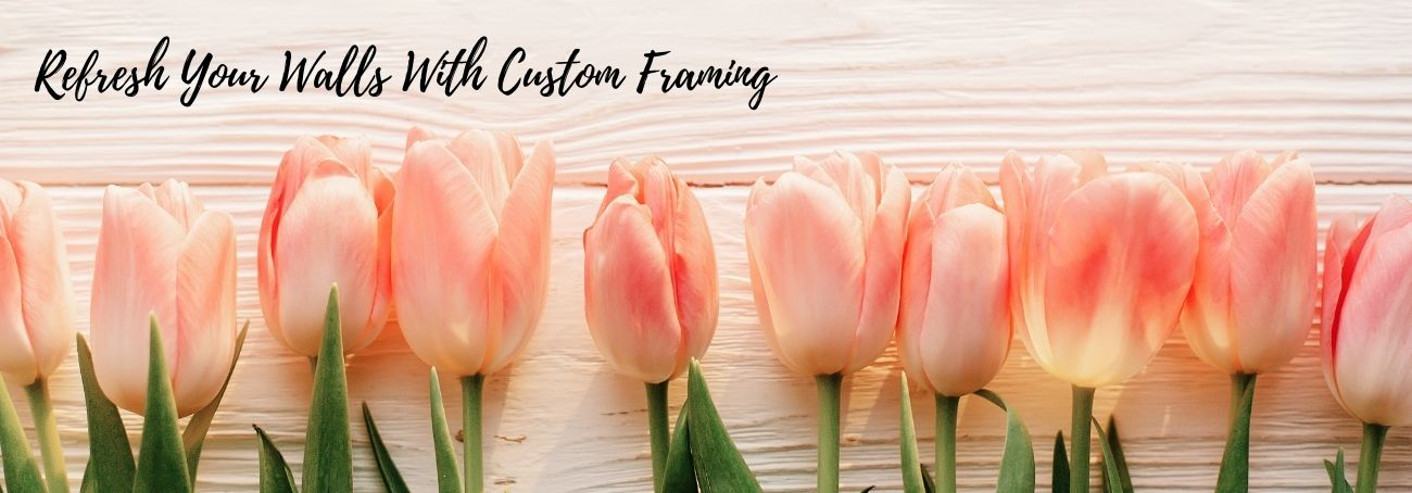 pink tulips against white background