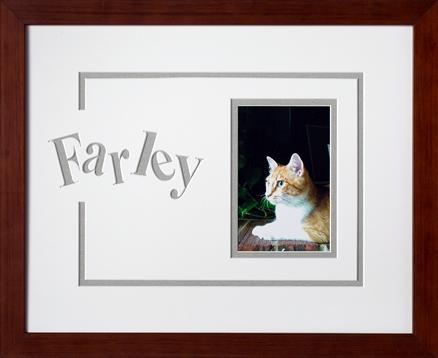 Art, Decor, Framing, Framed Memories, Pets