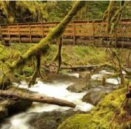 Bridge-Over-Water
