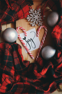 """Holiday decorations with """"JOY"""" and candy canes"""